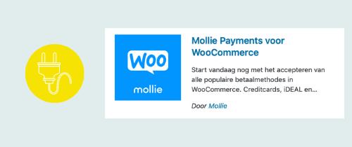 plugin om betalingen in je webshop mogelijk te maken | website, online leeromgeving, virtual assistant, webassistant